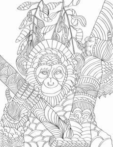 Adult Coloring Pages Nature