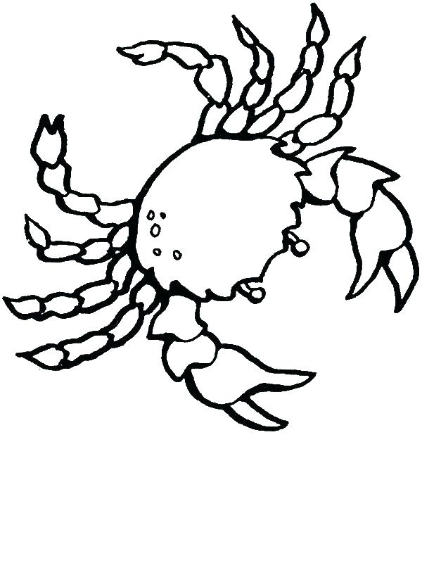 600x800 Crab Coloring Pages Crab Pictures To Color Free Realistic Sea Crab