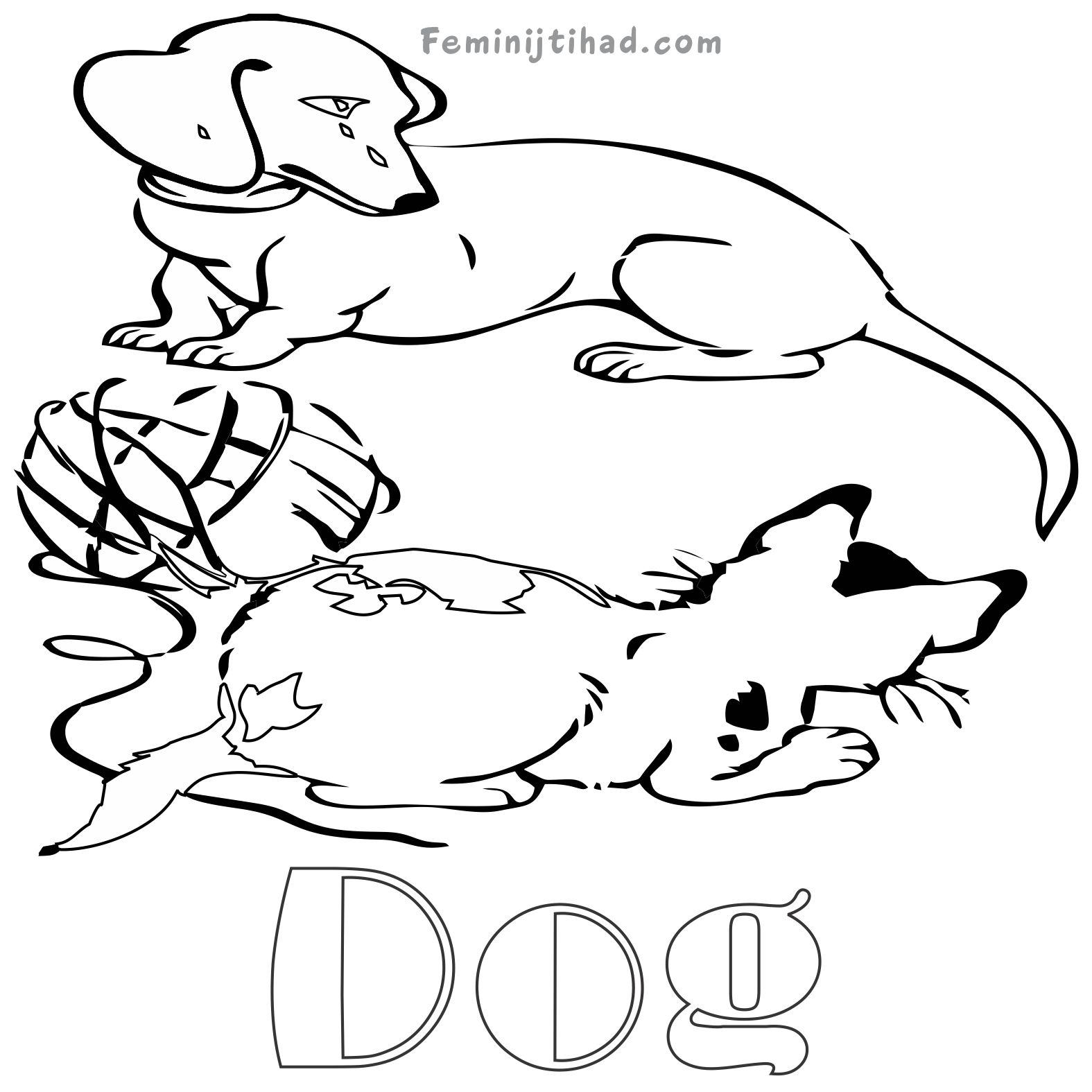Animal Track Coloring Pages