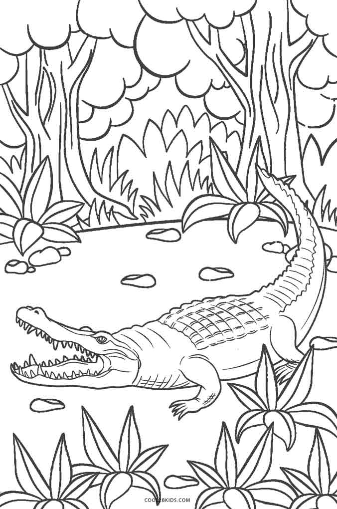 676x1020 Free Printable Alligator Coloring Pages For Kids Cool2bkids