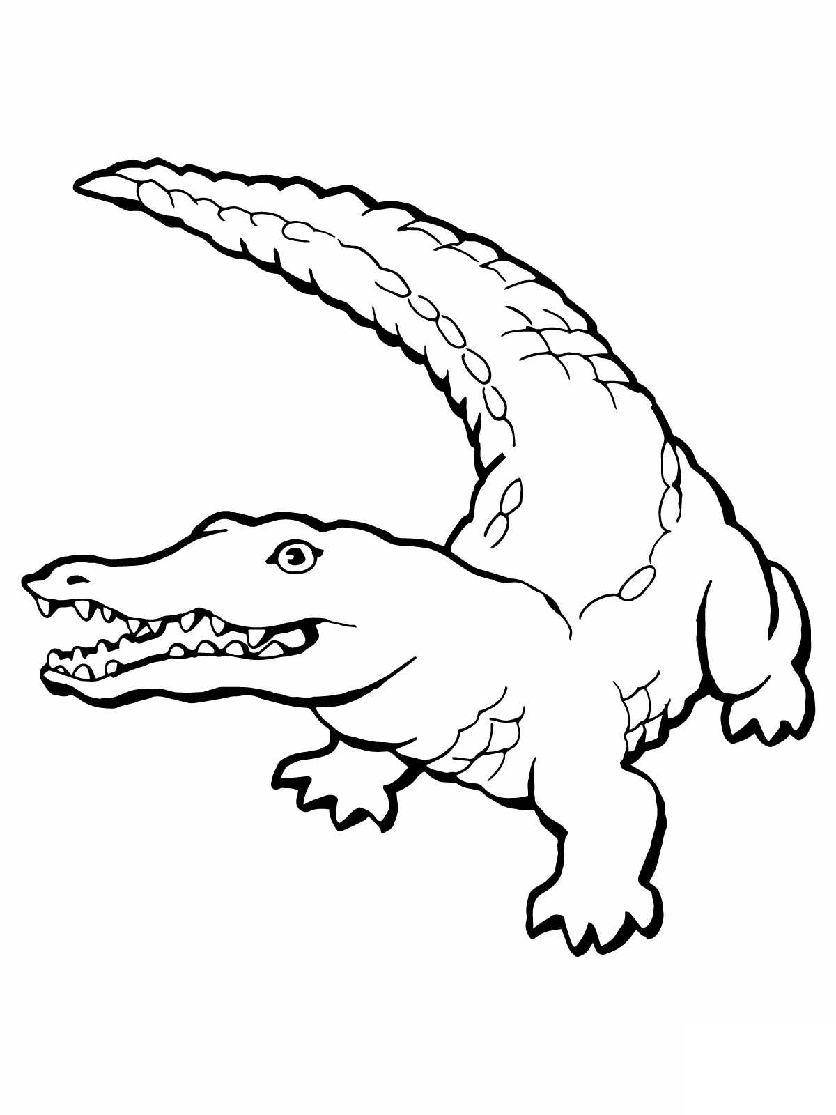 1200x1600 Gator Coloring Pages Baby Alligator Coloring Page Ebestbuyvn.co