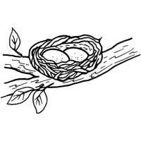 Bird Nest Coloring Page