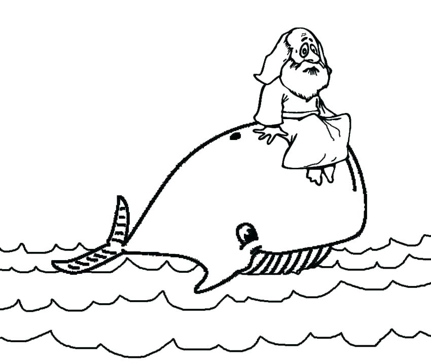 850x716 Blue Whale Coloring Page Whale Coloring Pages And The Whale