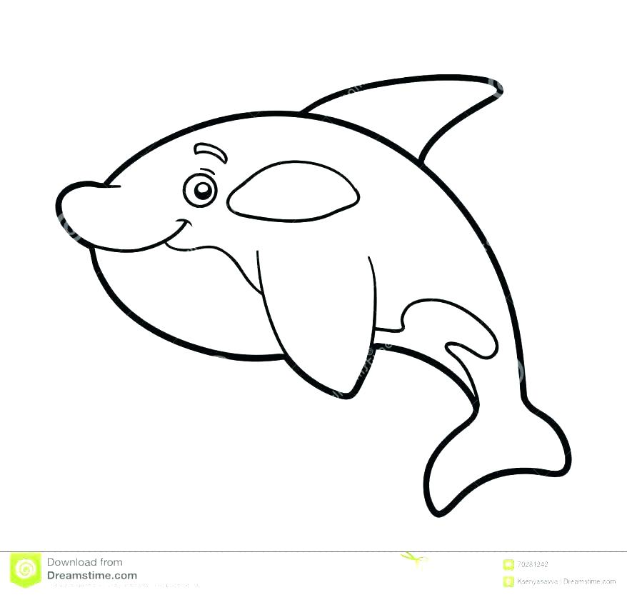 878x833 Free Printable Blue Whale Coloring Pages For Kids Fuhrer Von