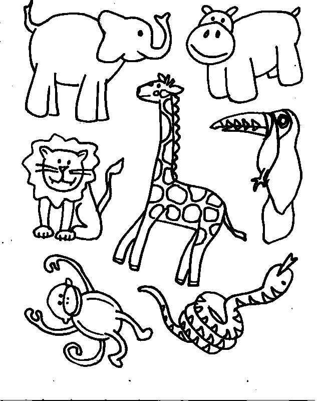 Cartoon Zoo Animals Coloring Pages