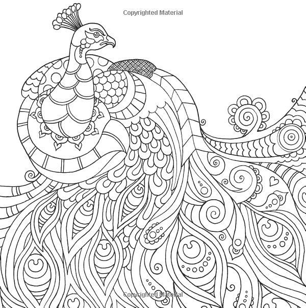 Coloring Pages For Adults Peacock