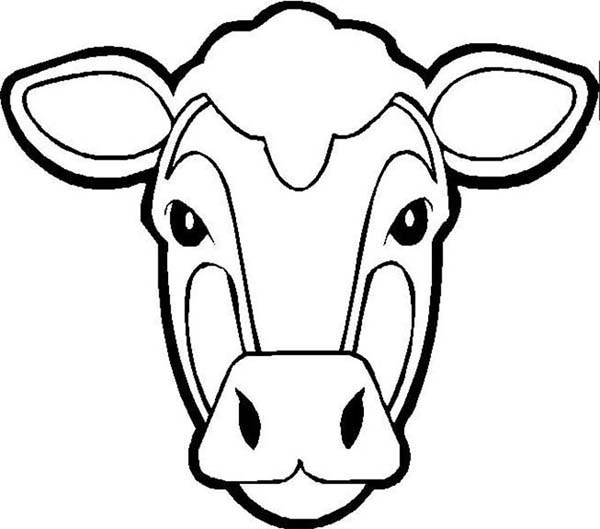 Cow Face Coloring Pages at GetColorings