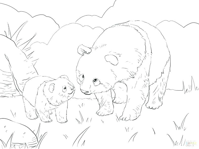 805x604 Cute Panda Coloring Pages Cute Panda Coloring Pages Colouring