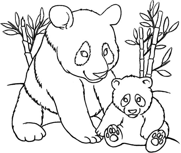 630x531 Cute Panda Coloring Pages Httpfreecoloring Panda