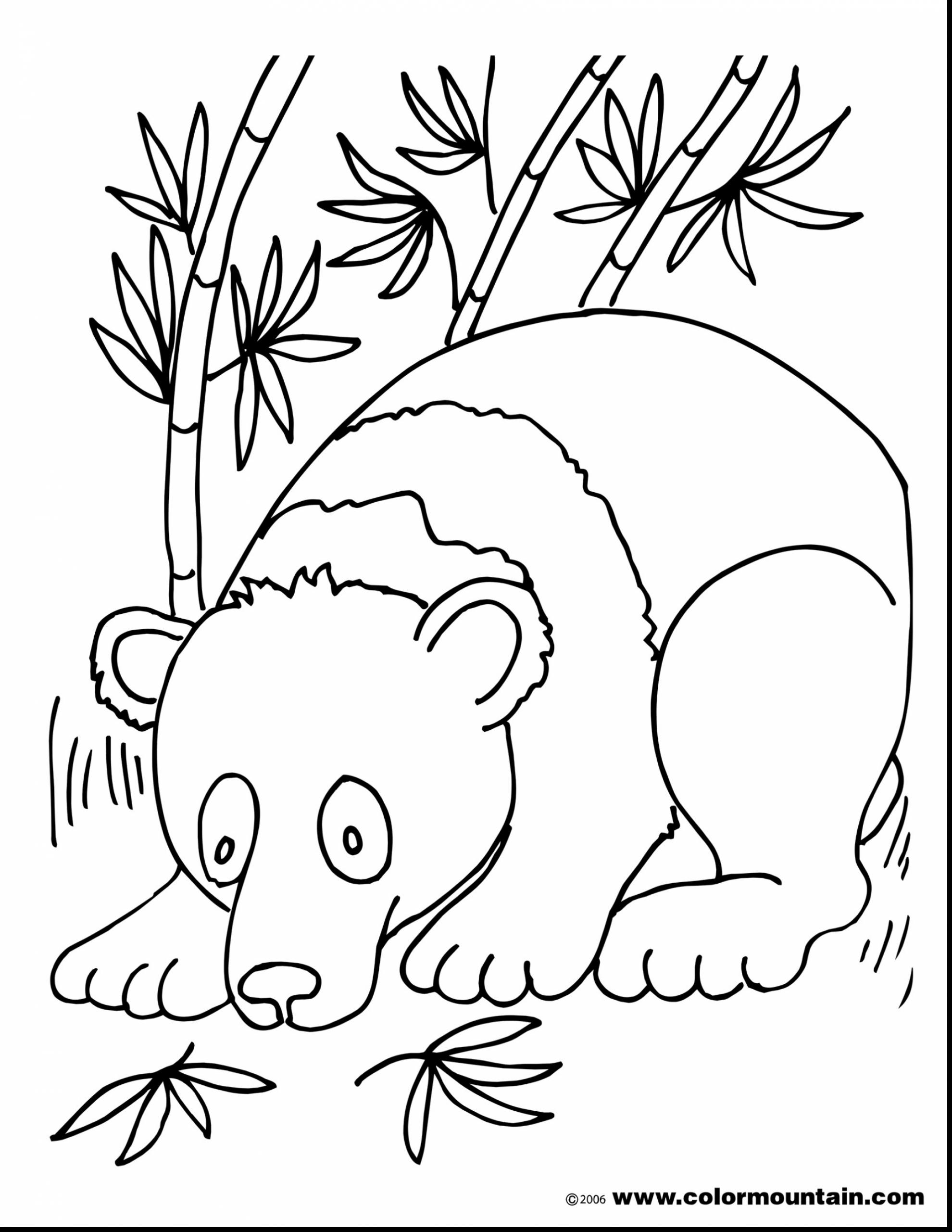 1980x2561 Coloring Pages Of Panda Bears Best Of Panda Bear Coloring Page