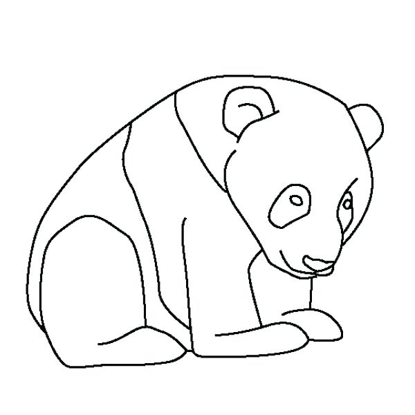 600x600 Coloring Pictures Of Pandas Coloring Page Cute Panda Bear Coloring