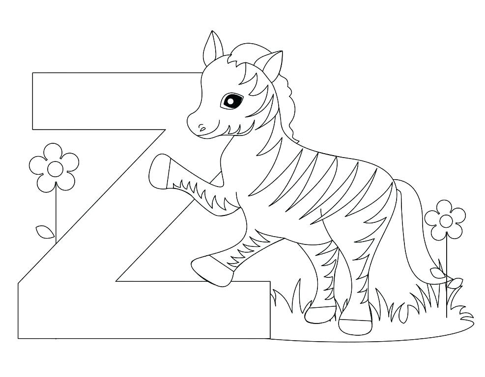 987x768 Zebra Coloring Sheet Baby Zebra Coloring Pages Zebra Coloring