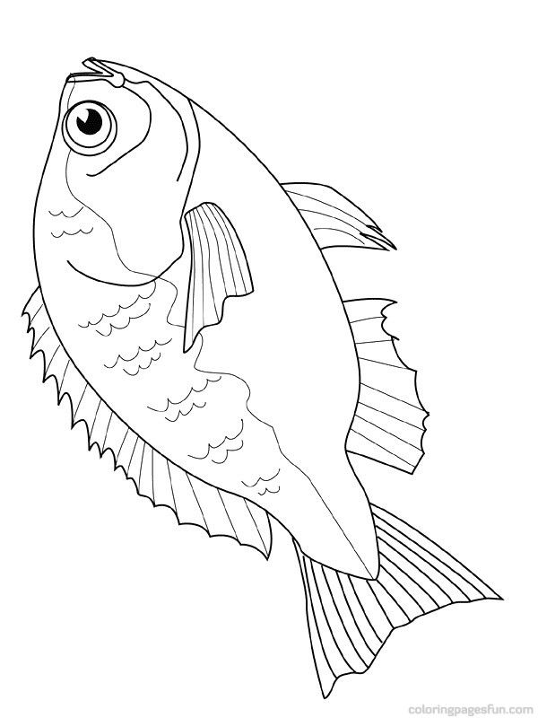Dead Fish Coloring Pages