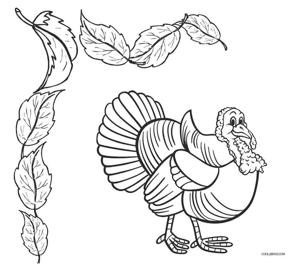 980x864 Birds Coloring Pages Cool2bkids