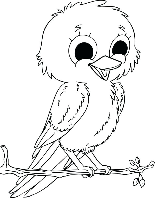 600x765 Robin Bird Coloring Pages Color Red Coloring Pages Robin Bird