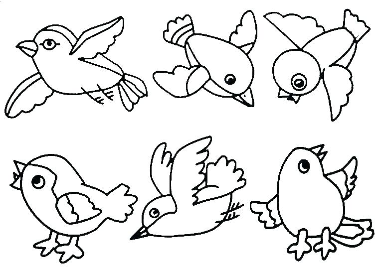 756x538 Realistic Bird Coloring Pages