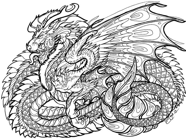 736x555 116 Best Zentangle Dragons Images On Coloring Books