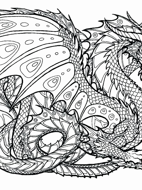 480x640 Dragon Coloring Pages For Adults Pictures New Free Dragon Coloring