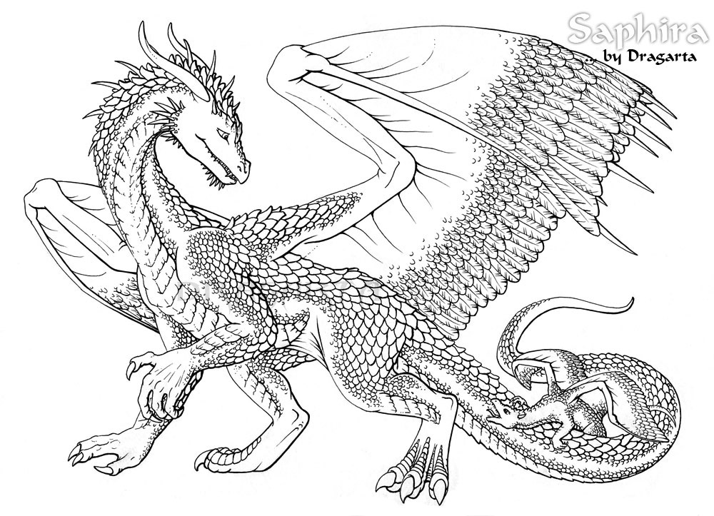 1000x723 Dragon Coloring Pages For Adults To Download And Print For Free