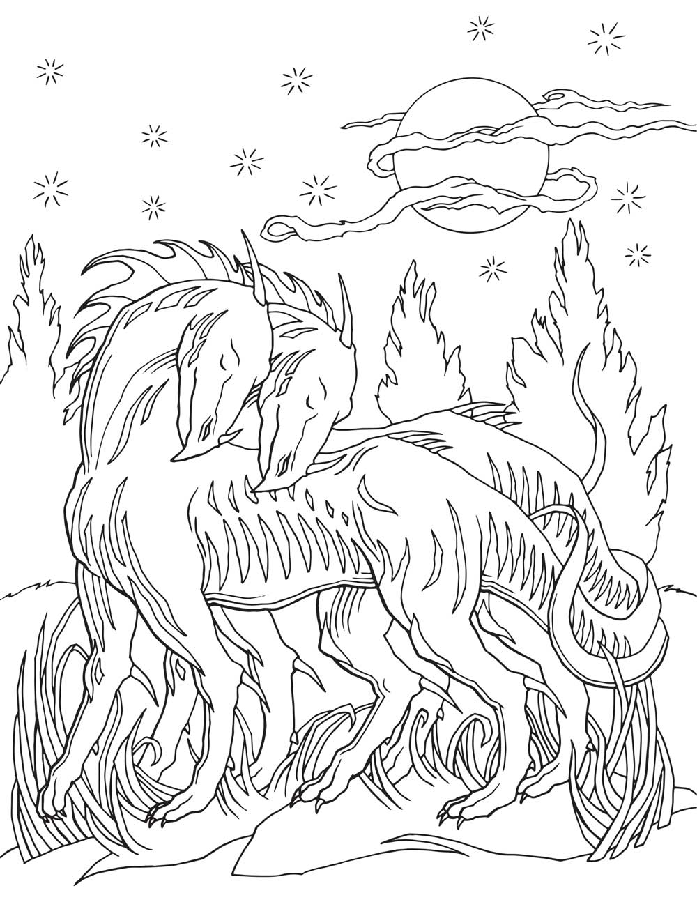1000x1294 Adult Coloring Book Dragon World