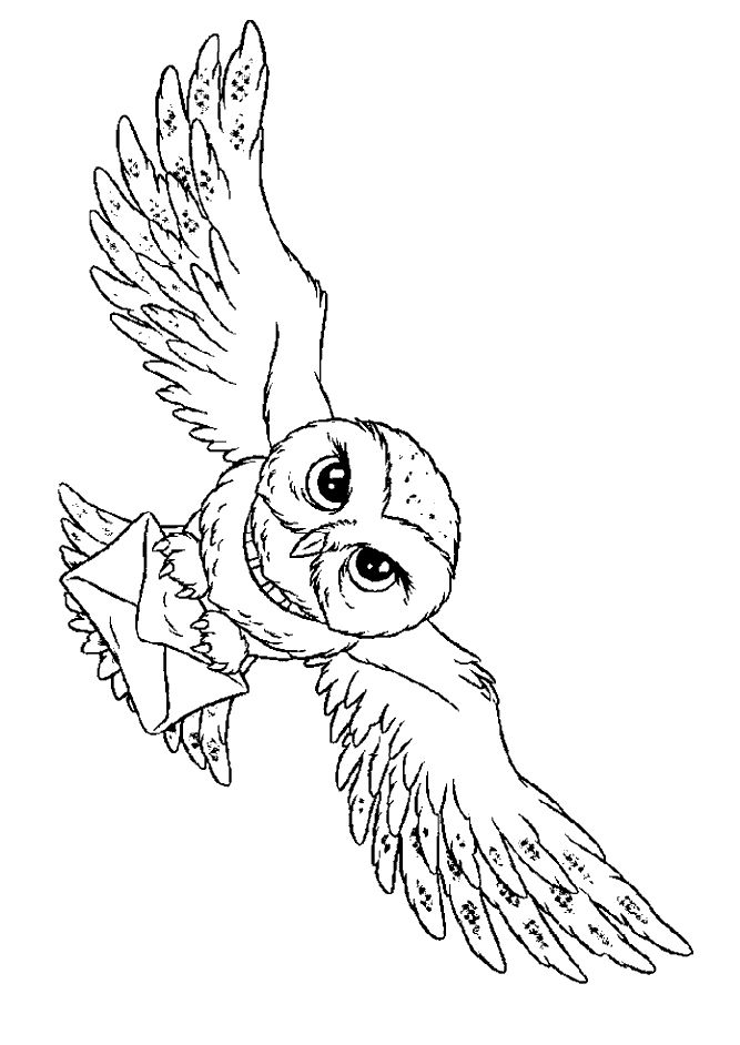 Flying Owl Coloring Pages