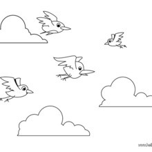220x220 Flying Birds Coloring Pages