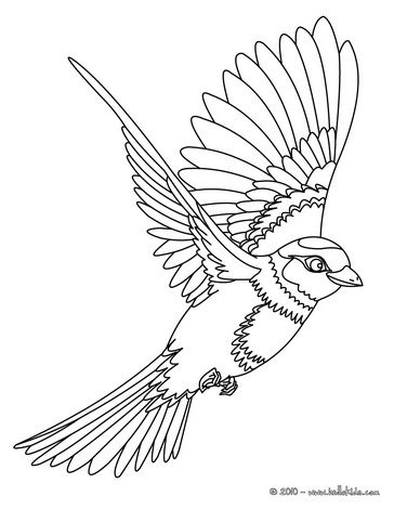 364x470 Image Detail For Flying Bird Coloring Page