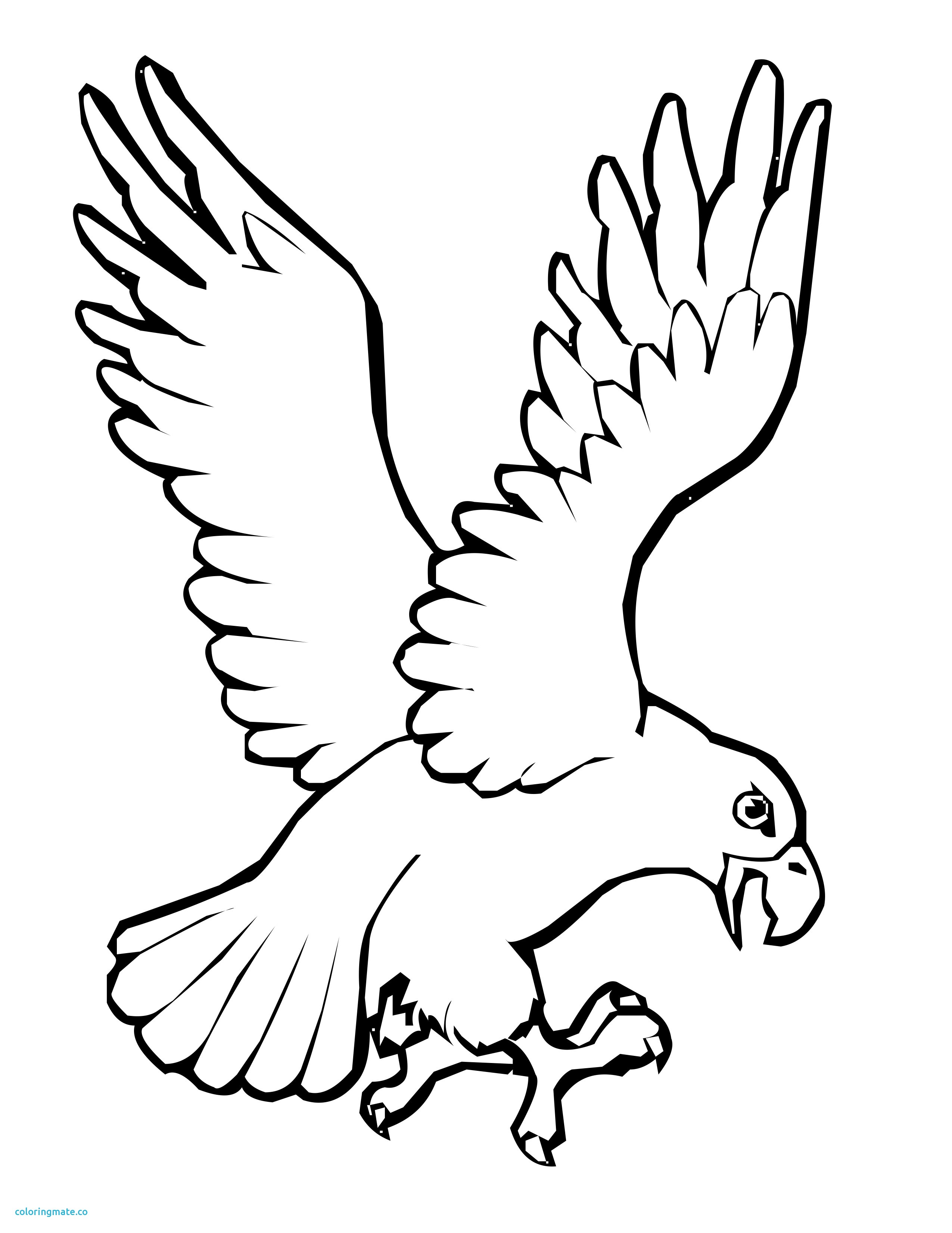 2550x3300 New Birds Coloring Pages Beautiful Bird Flying Pencil Coloring