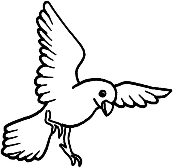 600x584 Birds Coloring Pages Beautiful Free Coloring Pages Of Flying Birds