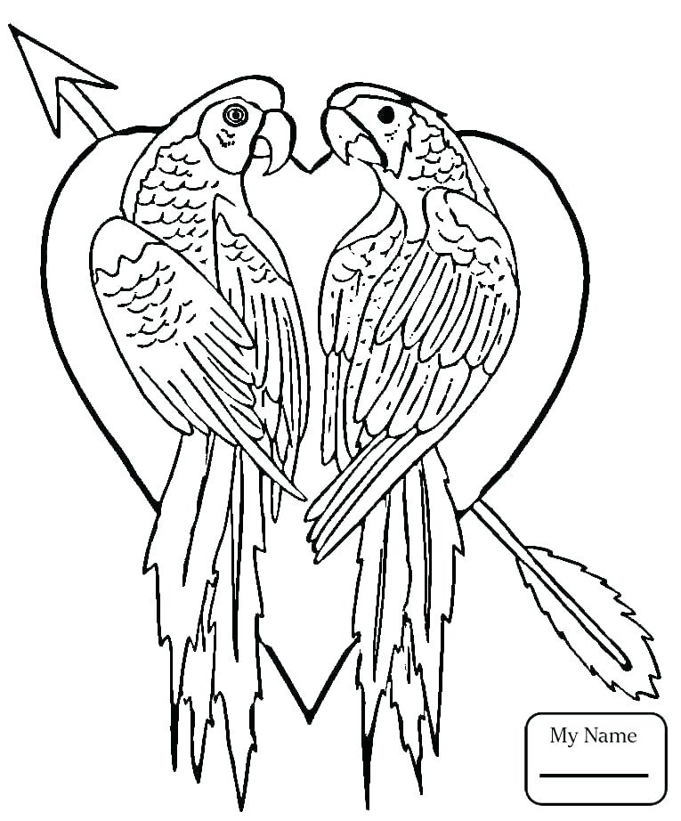 765x922 Coloring Page Birds Coloring Page Birds Flying