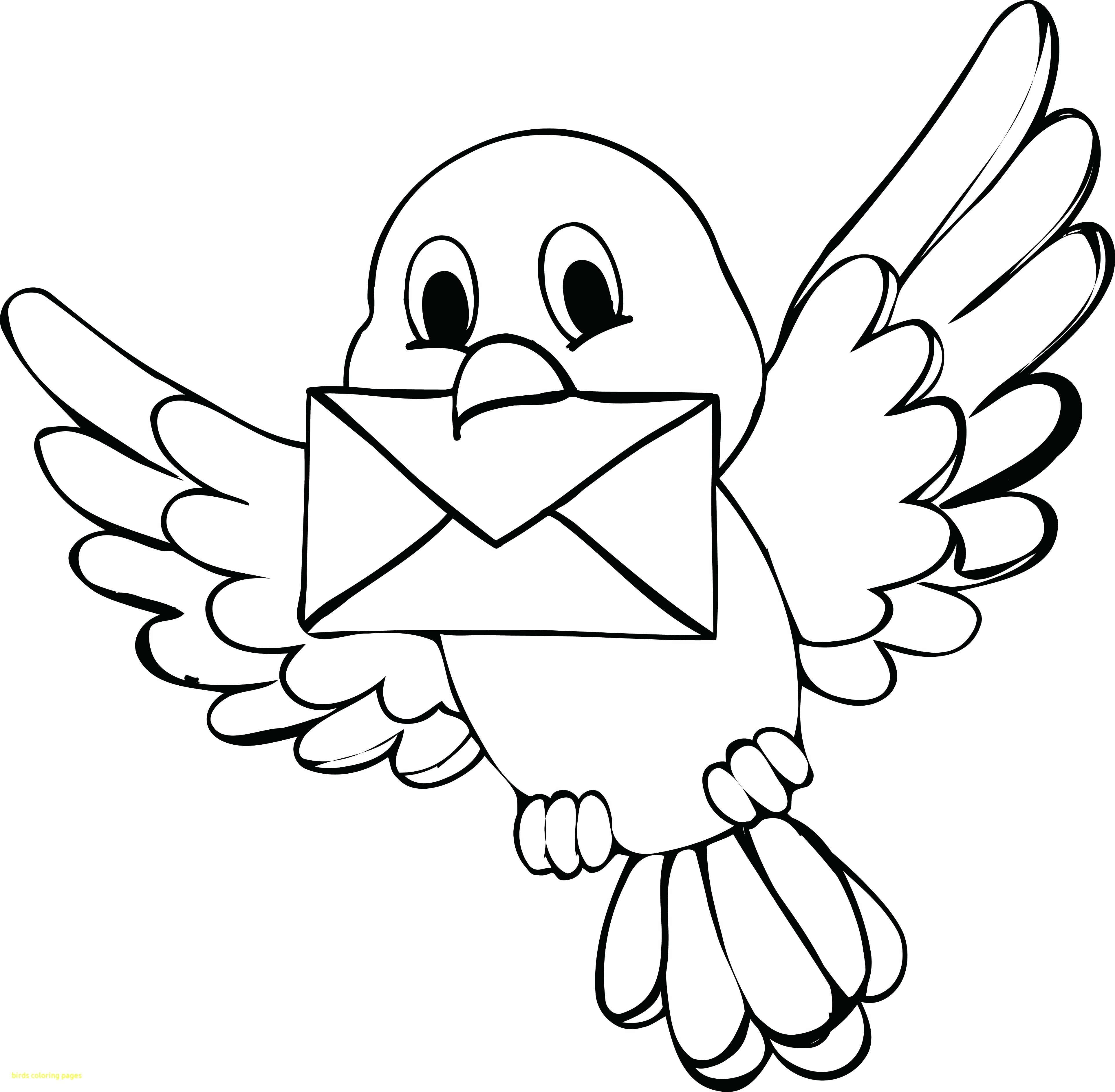 3851x3773 Coloring Pages Birds Flying New Coloring Coloring Page Birds Cute