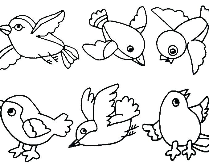 678x538 Coloring Pages Birds Free Coloring Pages Birds Coloring Pages