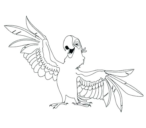 600x525 Coloring Pages Of Parrots Parrot Coloring Pages Parrot Coloring