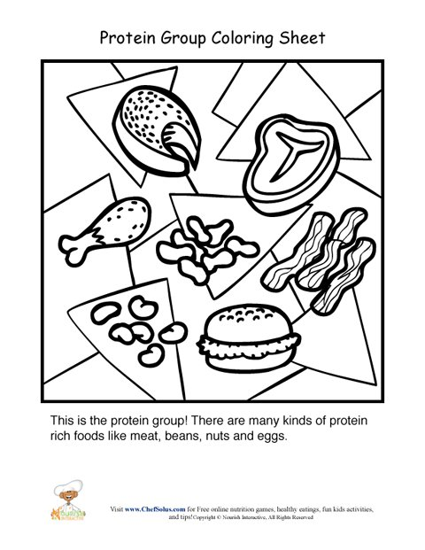 480x621 Protein Food Group Coloring Sheet