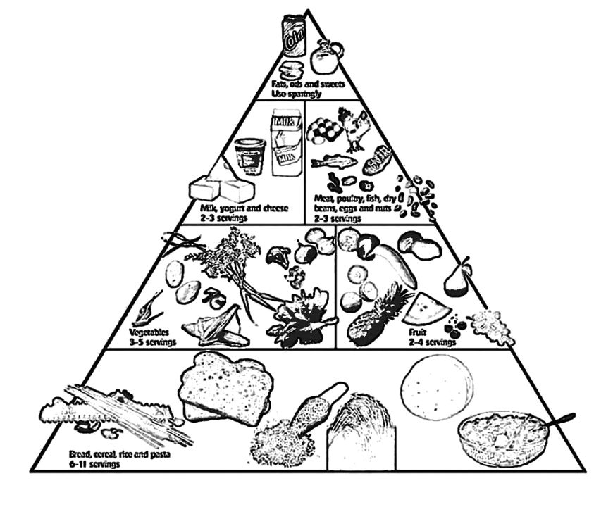 870x720 The Food Pyramid With A Drink And Other Coloring Pages Food