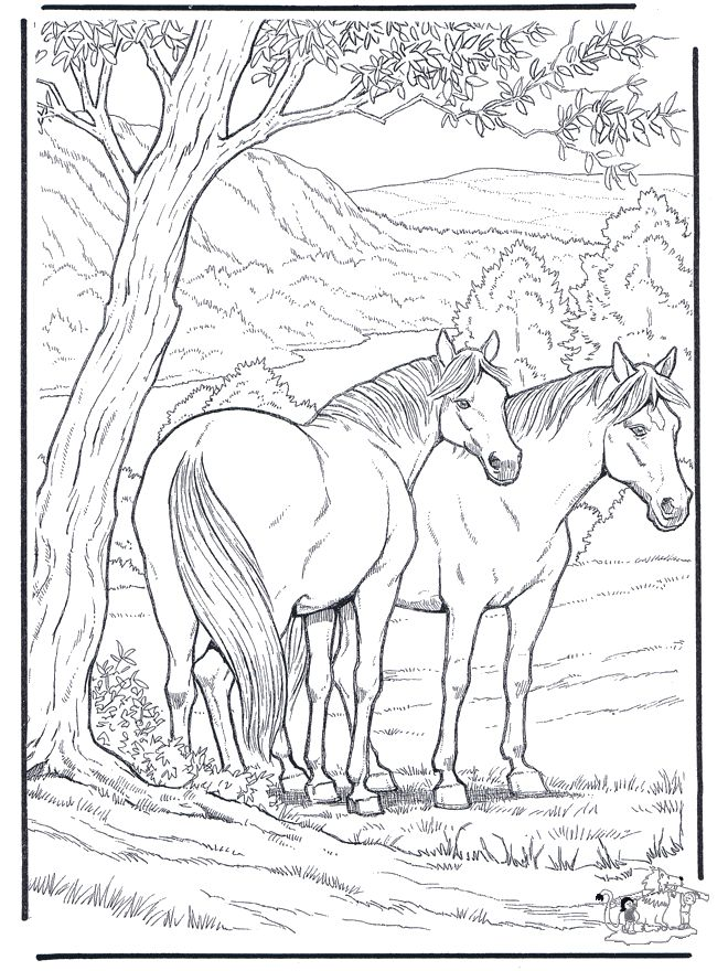 Free Coloring Pages For Adults Animals