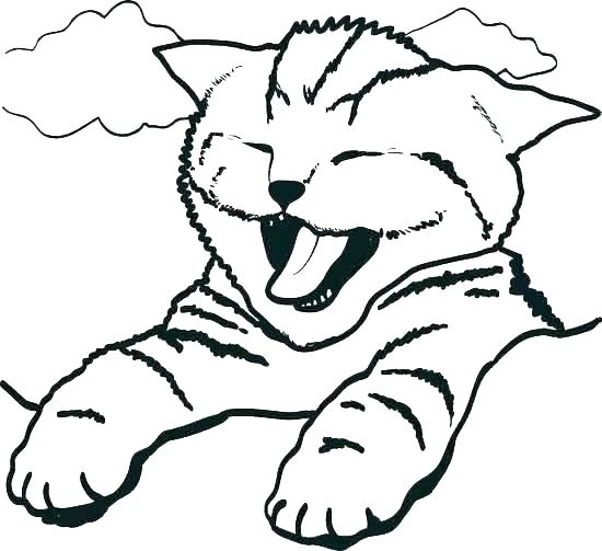 550x503 Kitten Coloring Pages For Kids Printable Pictures Of