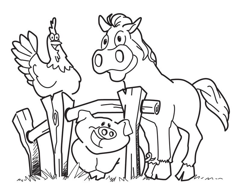 800x642 Farm Animal Coloring Pages For Preschoolers Preschool Coloring