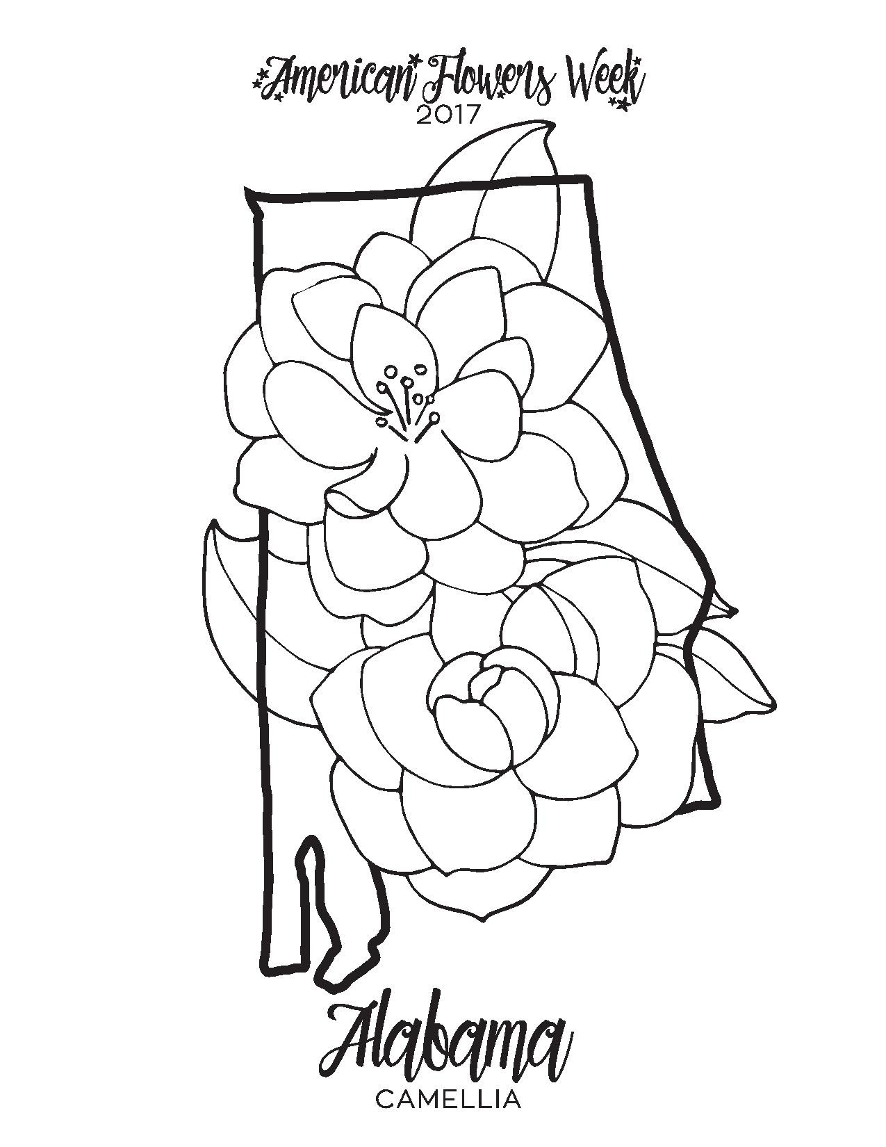 1275x1650 Alaska State Flag Coloring Page Unique New York State Flag