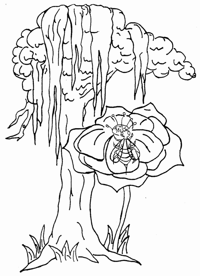638x878 Coloring Pages Of Trees And Flowers Beautiful New York State Flag