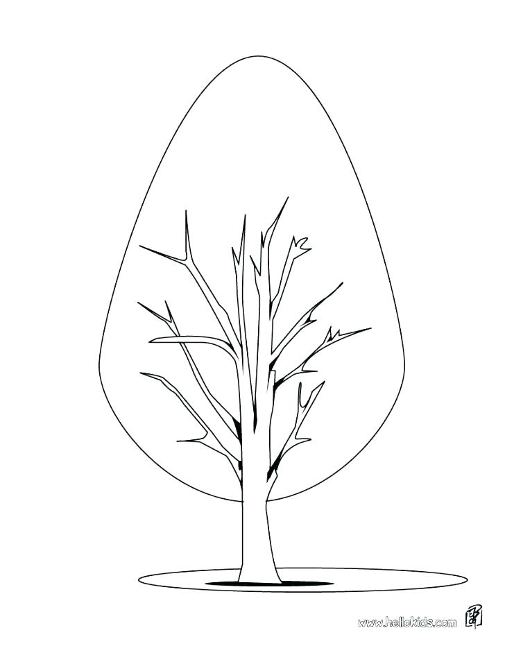 728x941 Palm Leaves Coloring Pages Fall