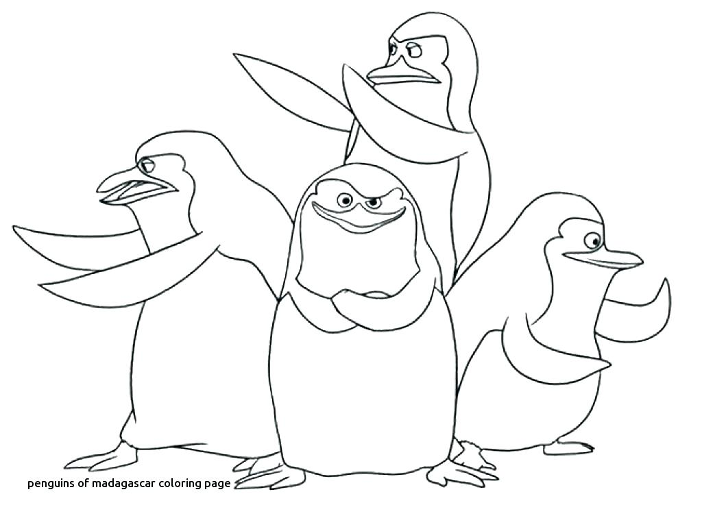 1024x756 Gloria Madagascar Coloring Pages Coloring Pages Penguins