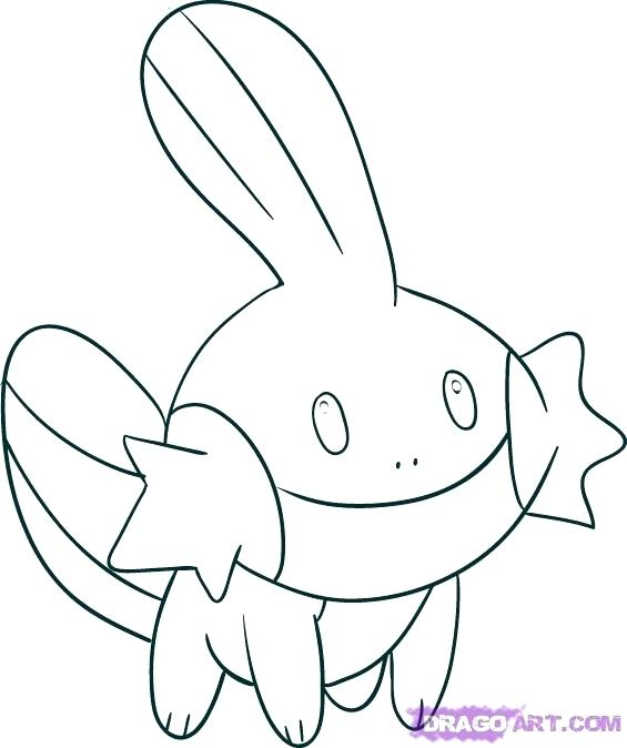 565x674 Mudkip Coloring Pages How To Draw From Coloring Pages For Adults