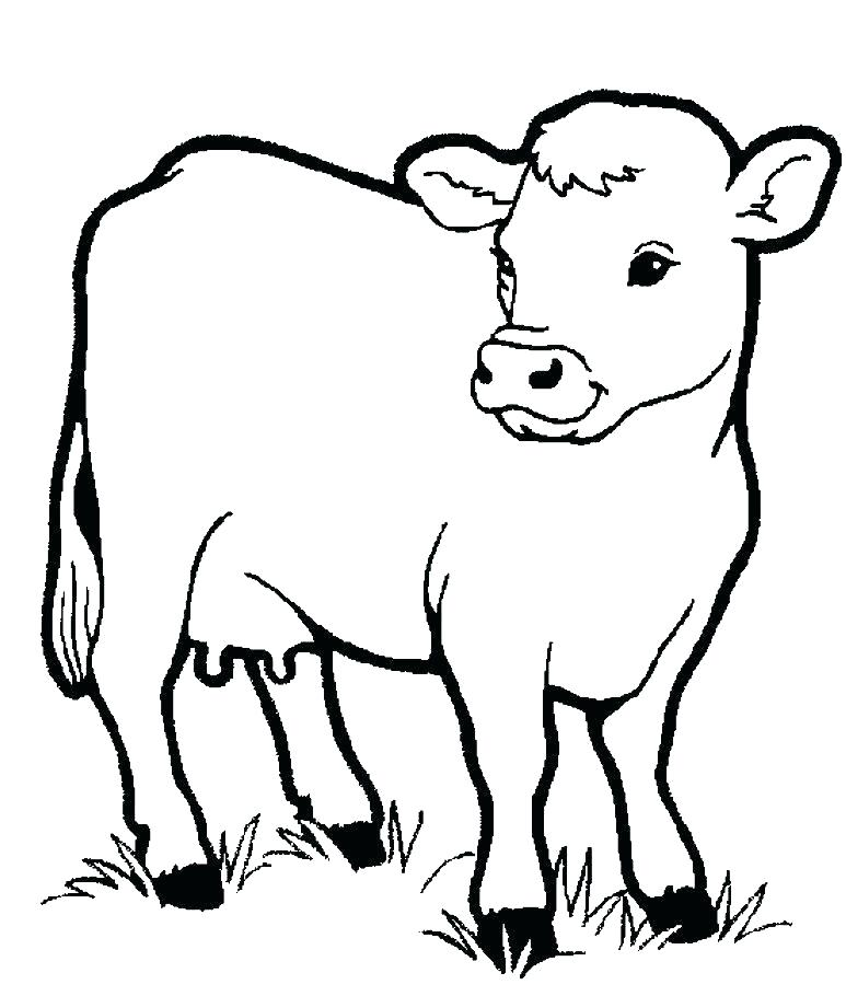 Preschool Animal Coloring Pages