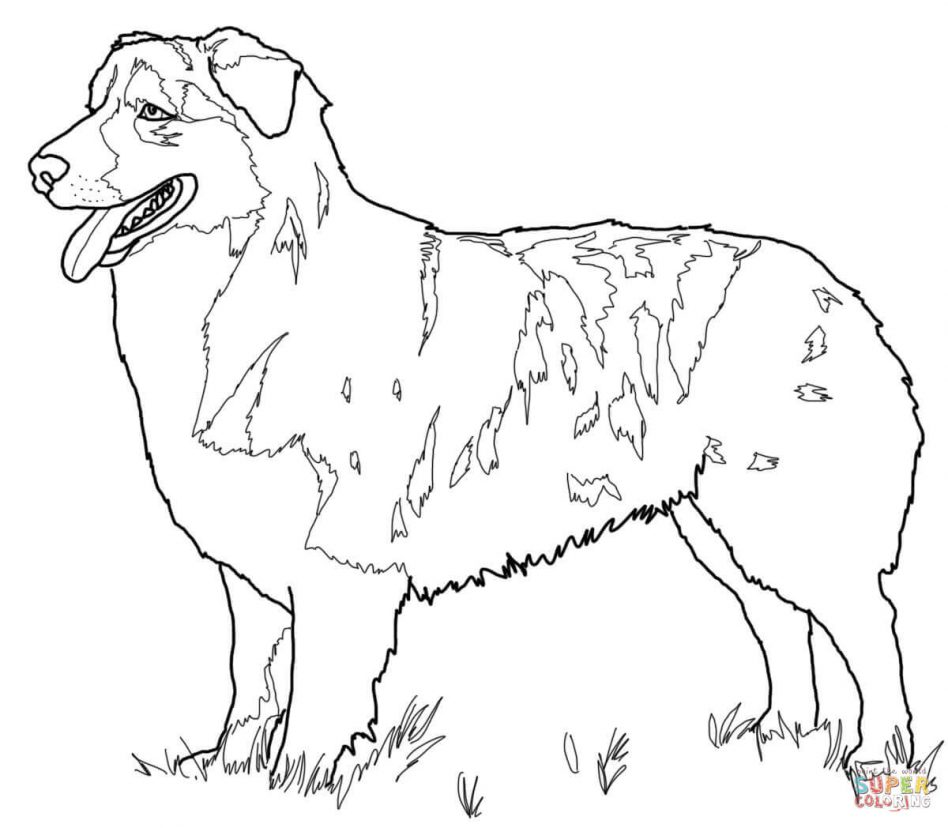 Realistic German Shepherd Coloring Pages
