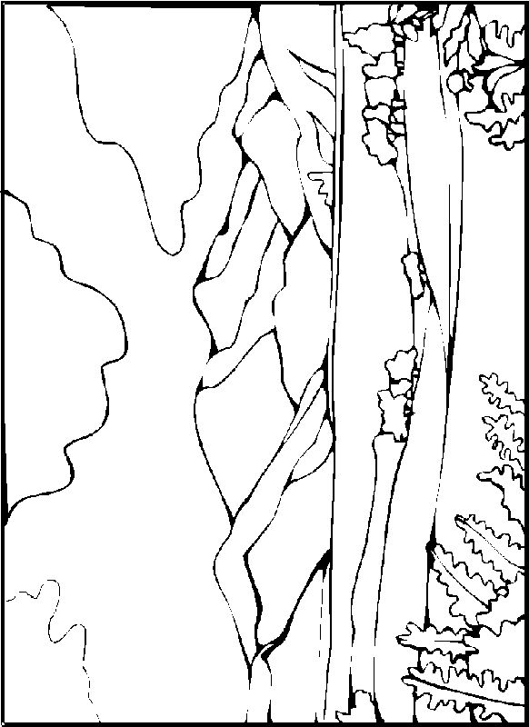 Realistic Landscape Coloring Pages