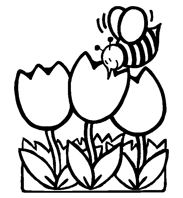 Spring Coloring Pages For Kindergarten