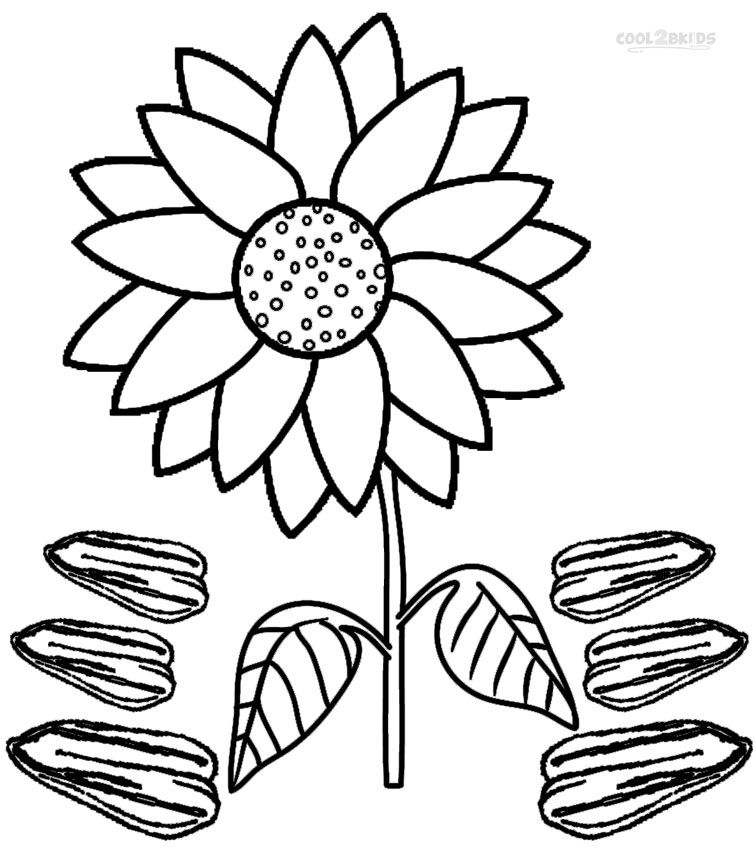 756x850 Printable Sunflower Coloring Pages For Kids Cool2bkids Plant