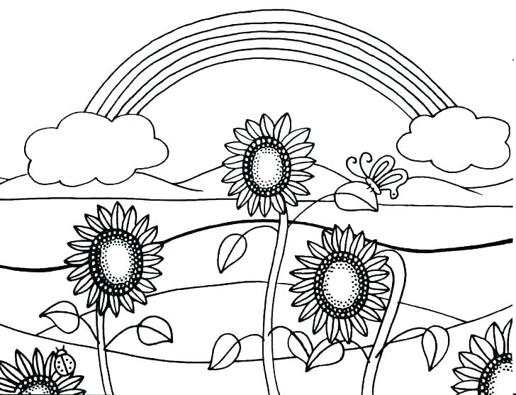 728x557 Sunflower Coloring Pages Color By Number Sunflower Coloring Page