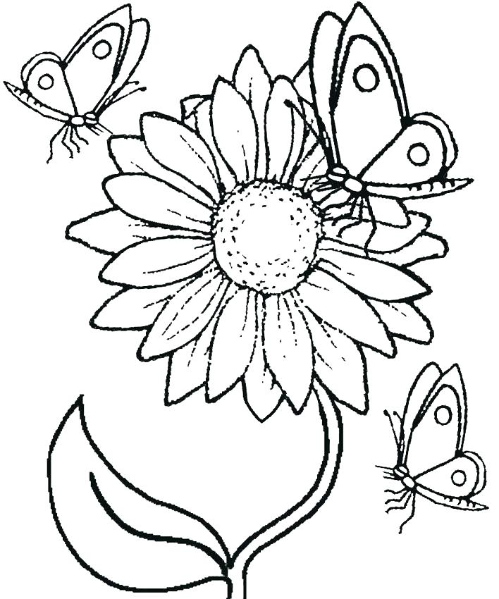 708x850 Sunflowers Coloring Pages Van Van Gogh Sunflower Colouring Pages